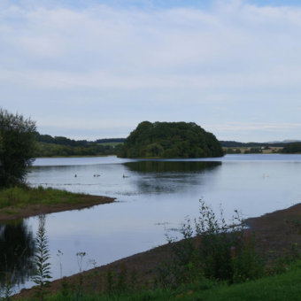 photo of lake and nature at Gartmorn Country Park